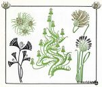 Art nouveau floral, dandelion, plant and flower graphics design. Free tattoo templates and Art deco decoration for Embroidery