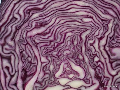 Halved red cabbage, color and structure, rexture, material, organic vegetable