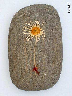 Stone Flower Assemblage