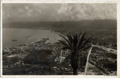 Palermo capital of Sicily. Panoramic view 1920. Old Postcard. Italian Architecture. Bay with Harbor.